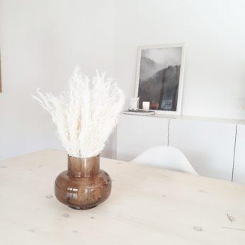 Trockenblumen – Agrostis Pulchella Weiß