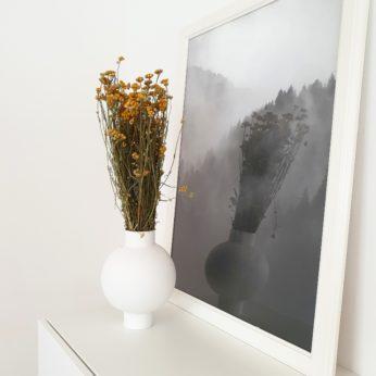 Trockenblumen – Lona Gelb