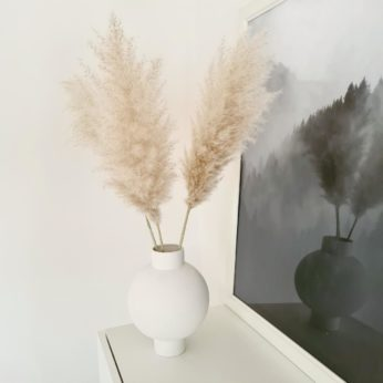 Trockenblumen- Pampasgras